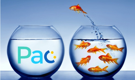 Image of fish jumping from own bowl to another in Pac versus WeWork comparison