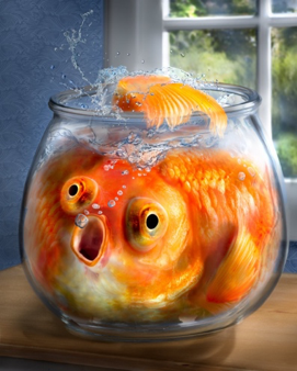 Image of Pac versus WeWork Comparison of Fishbowl