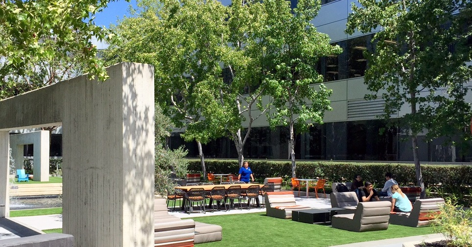 Workplace Wellness in Coworking Spaces Pacific Workplaces San Mateo Courtyard