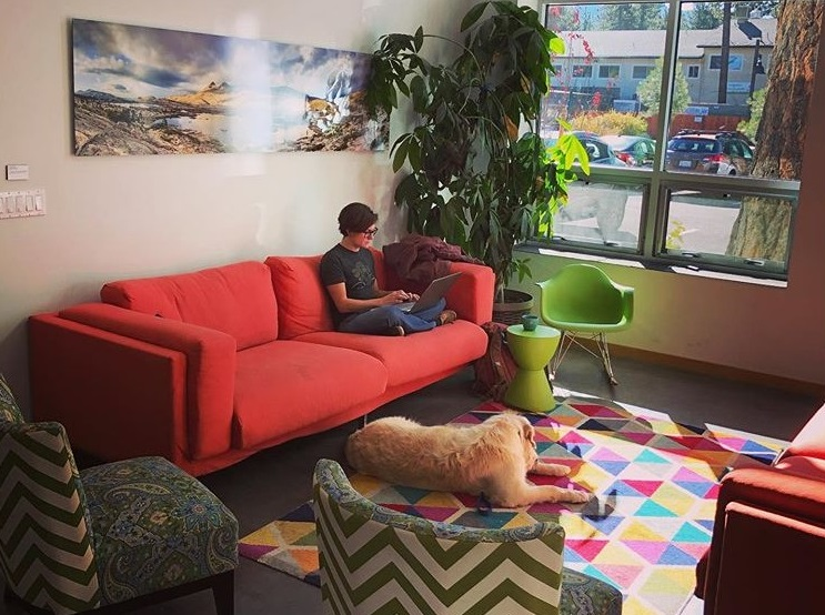 Cowork Tahoe Dog Friendly Coworking Space | CloudVO